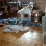 Bonny i farta opp fra hvileplassen foran ovnen