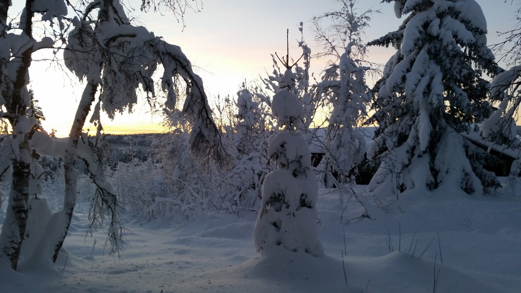 Vinter på hytta